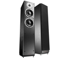 Dynaudio DM 3/7 Floorstanding Speakers (Black Ash)