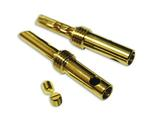 WireWorld Gold Banana Plugs