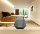 Dynaudio Music 1 Intelligent Wireless Speaker